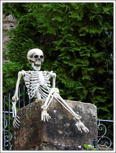 skeleton-2267910_1920.jpg